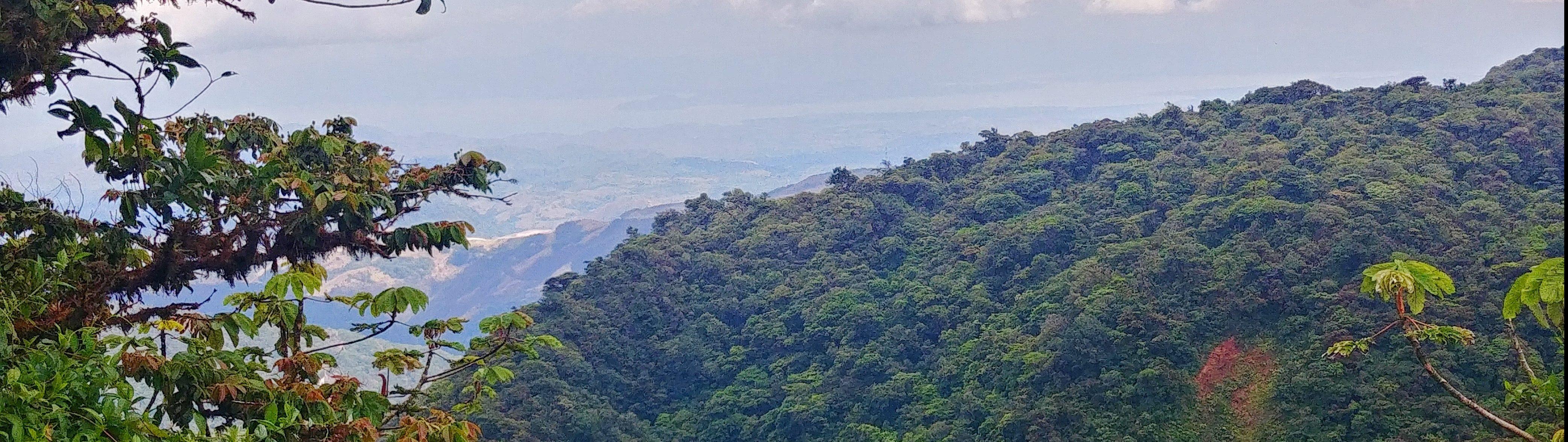 Parc Naturel Monteverde