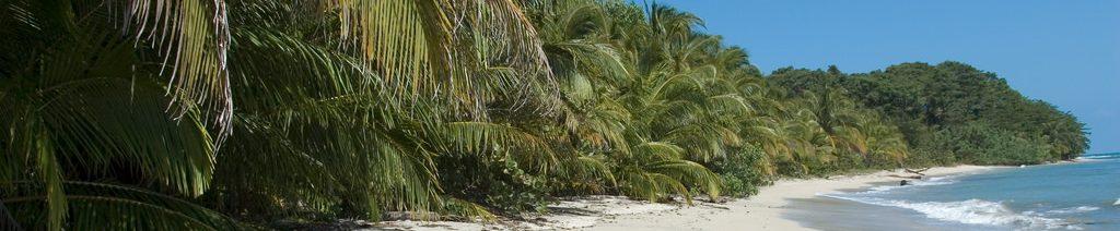 Parc National de Cahuita costa rica voyage agence de voyage