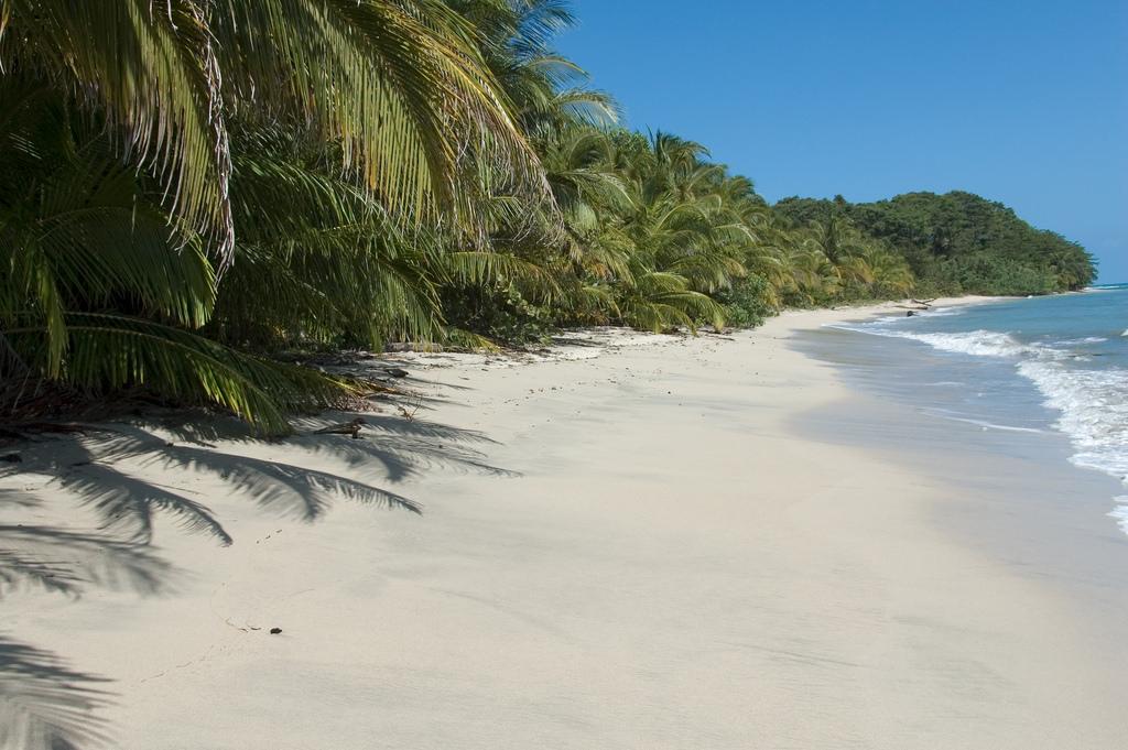 plage_costa_rica parc national de cahuita