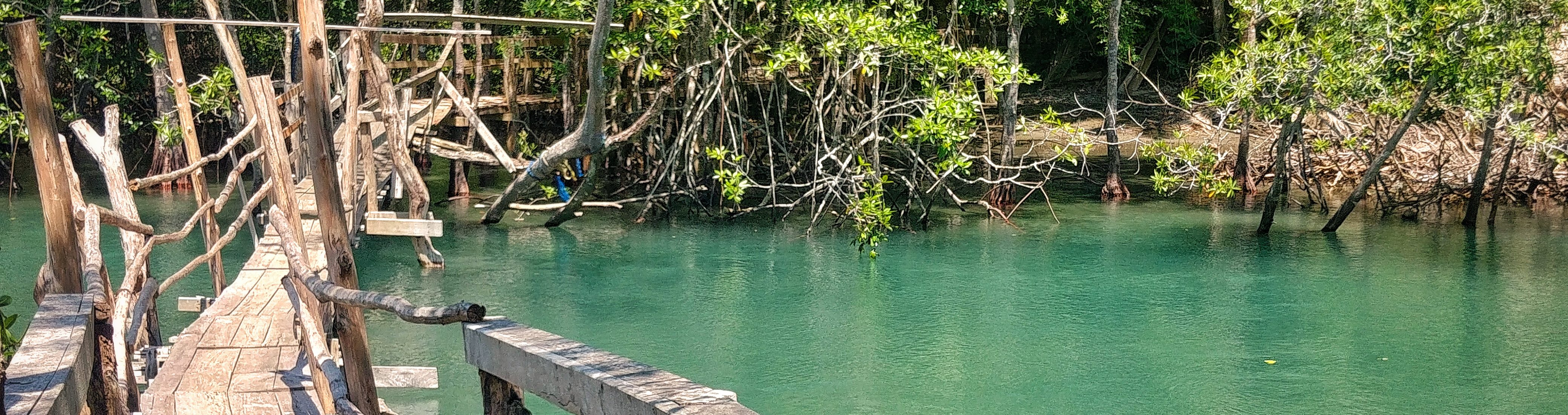 sud de Nicoya_pont_crocodiles_fleuve_nicoya_costa rica voyage