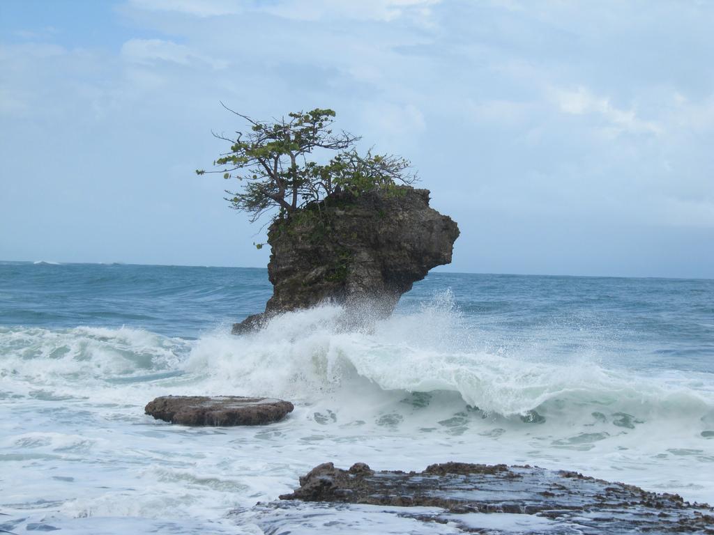 gandoca manzanillo puerto viejo caraibes costa rica voyage