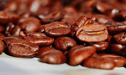 café, gains de café, costa rica voyage, agence francophone, sur mesure