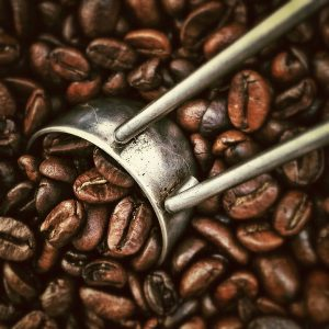 café, grains de café, costa rica voyage, agence francophone, sur mesure