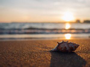 climat du costa rica, saison sèche, costa rica voyage, agence francophone, sur mesure