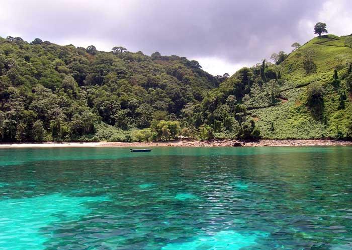 espèces invasives, ile cocos, costa rica voyage, agence francophone, sur mesure