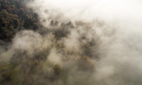 nuages Costa Rica, forêt de nuages, agence de voyage réceptive