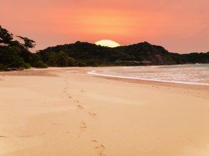 surfer au Costa Rica, plage, costa rica voyage, agence francophone, sur-mesure