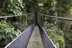 voyage de noces au Costa Rica, pont suspendu, costa rica voyage, agence francophone, sur mesure